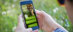Adelaide zoo app trail