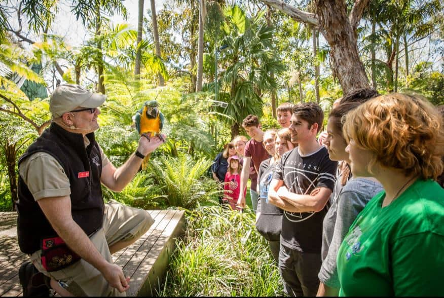 Image result for adelaide zoo south australia