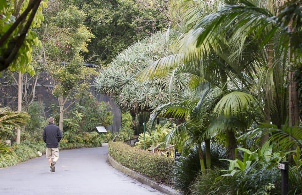 Adelaide Zoo reducing environmental footprint