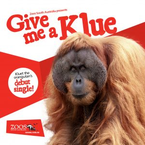 Give me a Klue