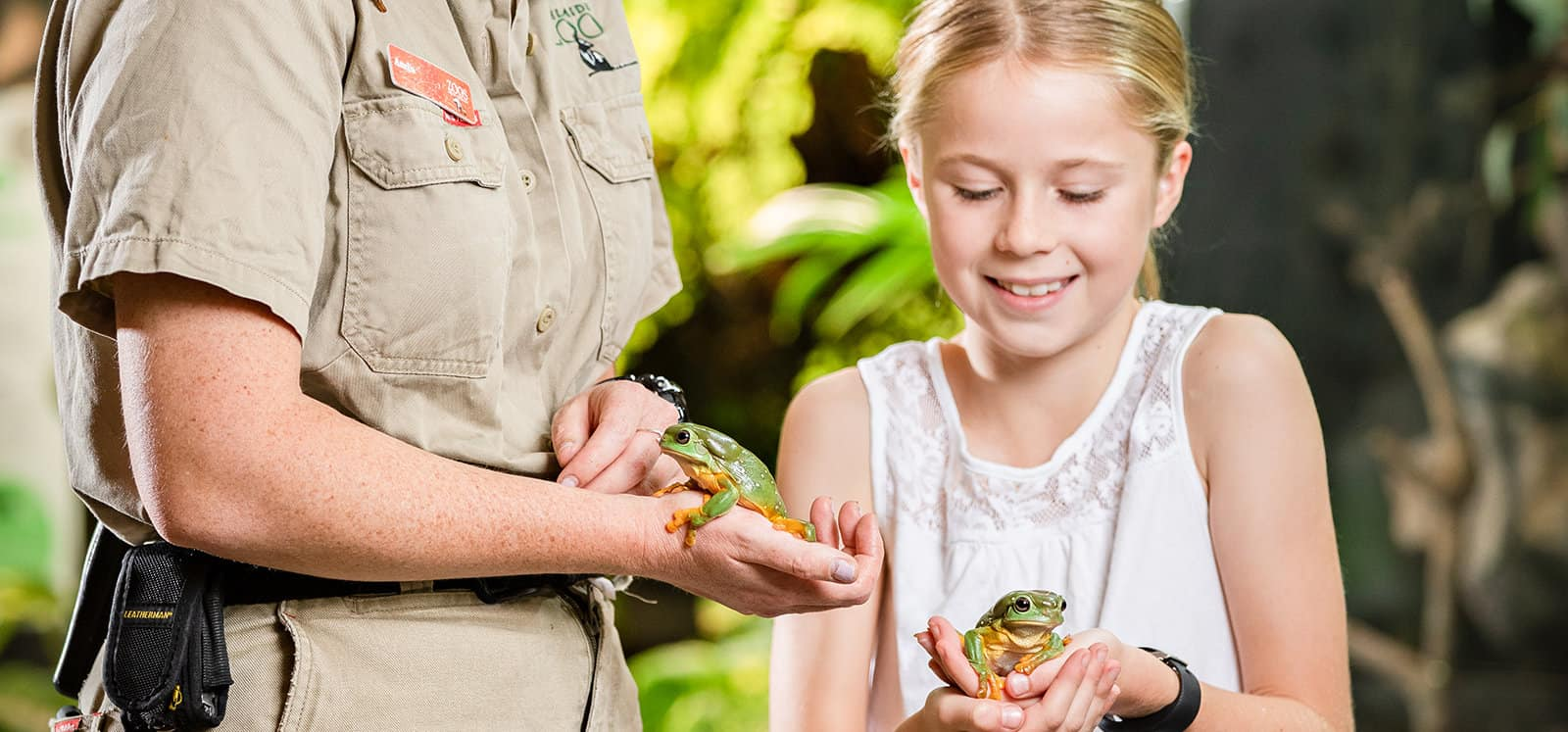 Smiling girl holding frog with Adelaide Zoo keeper
