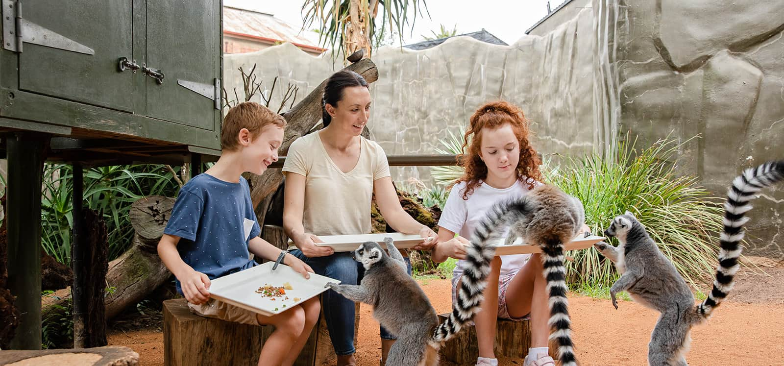 Family smiling as lemurs jump onto their laps during Lemur Encounter at Adelaide Zoo