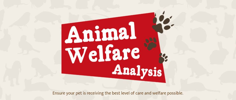 Animal welfare analysis