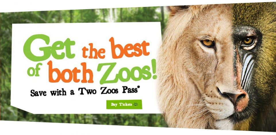 Two Zoos Pass